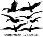 set of silhouettes of flying... | Shutterstock .eps vector #126226931
