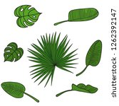 hand drawn tropical leaves... | Shutterstock .eps vector #1262392147