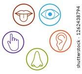 human senses icon. vector...   Shutterstock .eps vector #1262438794
