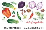 watercolor illustration. a... | Shutterstock . vector #1262865694
