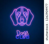glowing neon effect dogs club...