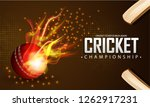 realistic fire ball and cricket ... | Shutterstock .eps vector #1262917231
