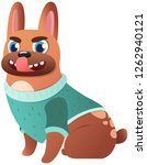 sassy french bulldog with... | Shutterstock .eps vector #1262940121