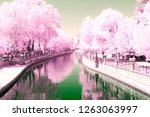 color infrared landscape | Shutterstock . vector #1263063997