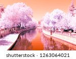 color infrared landscape | Shutterstock . vector #1263064021