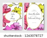 vector yellow and pink orchid.... | Shutterstock .eps vector #1263078727