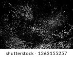 abstract background. monochrome ... | Shutterstock . vector #1263155257