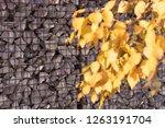 texture welded gabions | Shutterstock . vector #1263191704