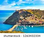 porto ercole village and boats... | Shutterstock . vector #1263432334