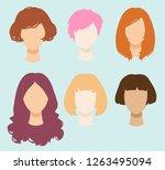 set of color simplified vector... | Shutterstock .eps vector #1263495094