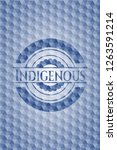 indigenous blue polygonal badge. | Shutterstock .eps vector #1263591214
