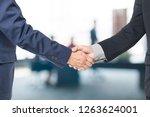 two handsome businessmen... | Shutterstock . vector #1263624001