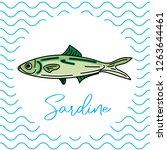 fish for food. vector... | Shutterstock .eps vector #1263644461