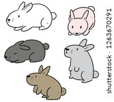 vector set of rabbits | Shutterstock .eps vector #1263670291