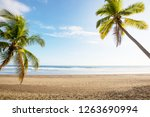 serenity on the tropical beach | Shutterstock . vector #1263690994