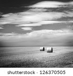 Bales of hay in the fields in summer time harvest in stunning black and white - stock photo