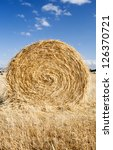 Bales of hay in the fields in summer time harvest - stock photo