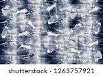 denim jeans ripped destroyed... | Shutterstock . vector #1263757921