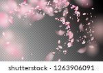 flower petals in the wind.... | Shutterstock .eps vector #1263906091