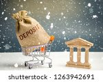 bag with money and the word... | Shutterstock . vector #1263942691