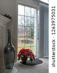 Poinsettia Window Scene With...