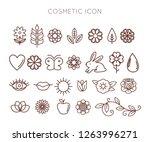 set of organic cosmetics icon... | Shutterstock .eps vector #1263996271