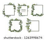 set of frames with leafs for... | Shutterstock .eps vector #1263998674