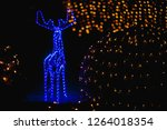 deer blurring angle at night of ... | Shutterstock . vector #1264018354