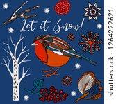 winter holidays invitation card ... | Shutterstock .eps vector #1264222621