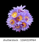 bouquet of nil manel or blue... | Shutterstock . vector #1264224964