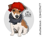 vector dog with red hat and... | Shutterstock .eps vector #1264229677