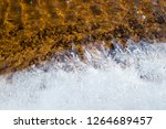 colorful stones under the...   Shutterstock . vector #1264689457