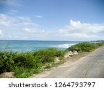 Windswept Coastline And Road O...