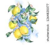 watercolor vintage greeting... | Shutterstock . vector #1264820377