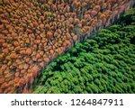russian caucasus mountains ... | Shutterstock . vector #1264847911