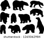 illustration with polar bears...   Shutterstock .eps vector #1265062984