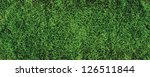 beautiful green grass texture ...   Shutterstock . vector #126511844