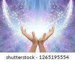 bathing in beautiful healing... | Shutterstock . vector #1265195554