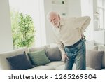 close up photo of grey haired... | Shutterstock . vector #1265269804