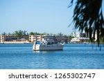 miami  fl  usa   december 22 ... | Shutterstock . vector #1265302747