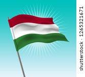 waving hungary flag. vector... | Shutterstock .eps vector #1265321671