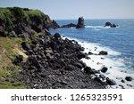 seopjikoji on jeju  korea | Shutterstock . vector #1265323591
