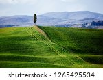 tuscany  italy. green field and ...   Shutterstock . vector #1265425534