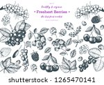 berry hand drawn vector... | Shutterstock .eps vector #1265470141