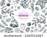 berry hand drawn  vector... | Shutterstock .eps vector #1265511067