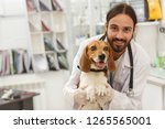 Stock photo view of vet doctor with beard posing with cute friendly dog young vet smiling at camera holding 1265565001