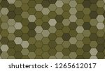 hexagonal grid pattern with... | Shutterstock . vector #1265612017