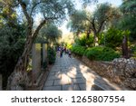 house of the virgin mary ... | Shutterstock . vector #1265807554