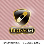 gold shiny emblem with bandage ... | Shutterstock .eps vector #1265831257