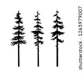 tree pine  collection tree... | Shutterstock .eps vector #1265979007